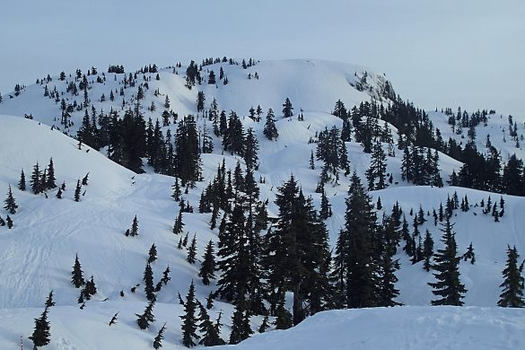 Hike Report: Mount Seymour Winter Trail