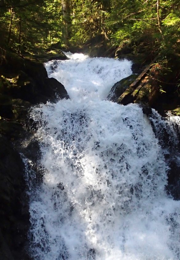 Adventures on Mountain Loop Highway (Part I)