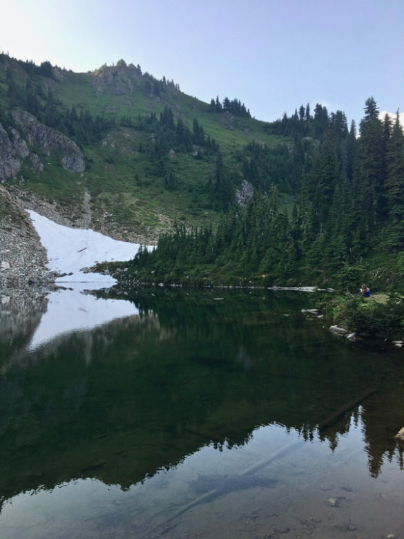 PCT: From Forest to Meadow to Rocks